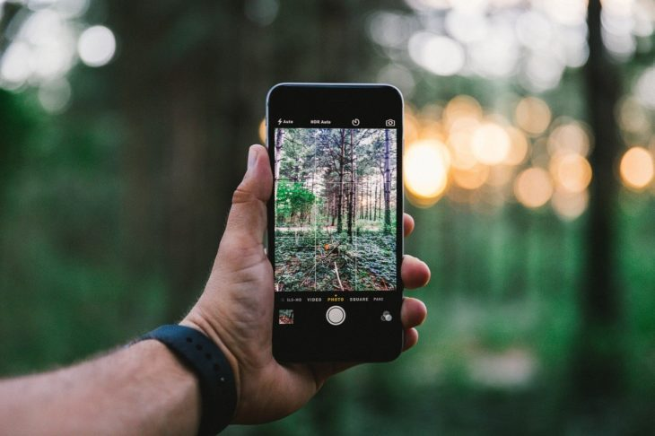 Iphone Hand Picture Photography  - Free-Photos / Pixabay